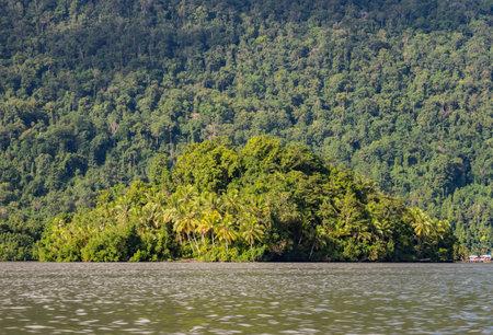 Rain forest. Arguni Bay. Bird's Head Peninsula, West Papua, Indonesia, Asia.
