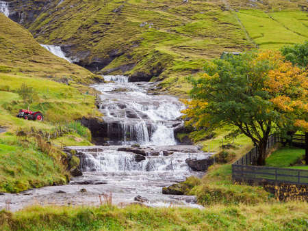 A waterfall after a rainy day and a unique fall tree in the Faroe Islands, Denmark. Northern Europe.