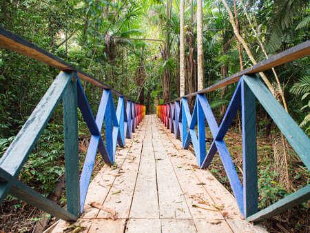 Rainbow bridge leading to paradise - the magical Amazon jungle. Amazon. Latin America.