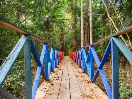 Rainbow bridge leading to paradise - the magical Amazon jungle. Amazon. Latin America. Banque d'images