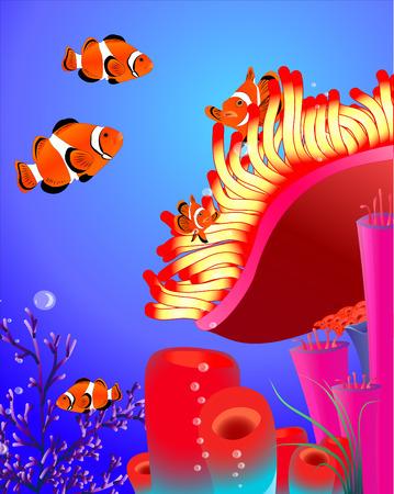 no mesh no blend. clown fish with corals Vector