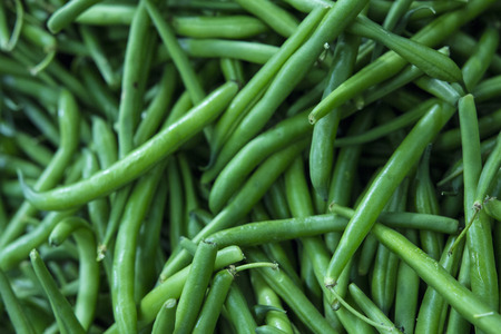 common bean: Green beans, also known as string bean, snap bean in the northeastern and western United States, or ejotes in Mexico, are the unripe fruit of various cultivars of the common bean. Stock Photo