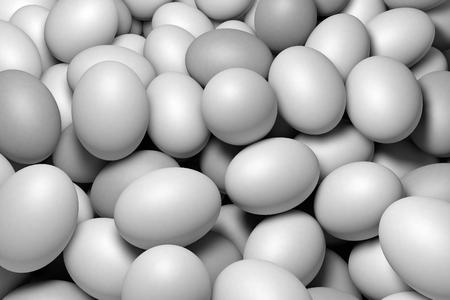 Witte eieren Stockfoto
