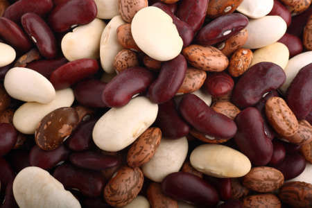Beans background containing three species of genus Phaseolus photo