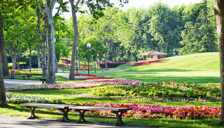 botanic: Botanic Park