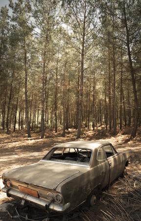 abandoned car: Coches abandonadas