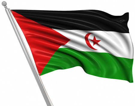 sahrawi arab democratic republic: Flag of the Sahrawi Arab Democratic Republic , This is a computer generated and 3d rendered picture.