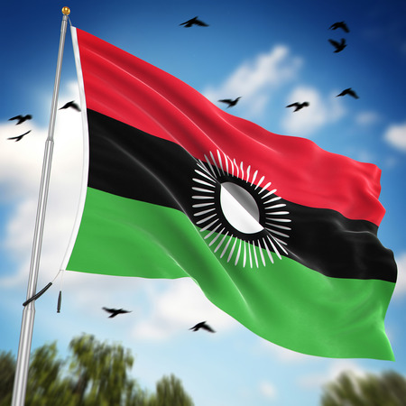 malawi flag: Flag of Malawi , This is a computer generated and 3d rendered image.