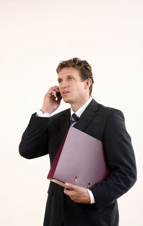 Businessman holding file while talking on the phone Stock Photo - 3198846
