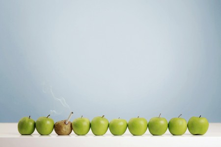 Rotten apple smoking cigarette in between fresh green apples