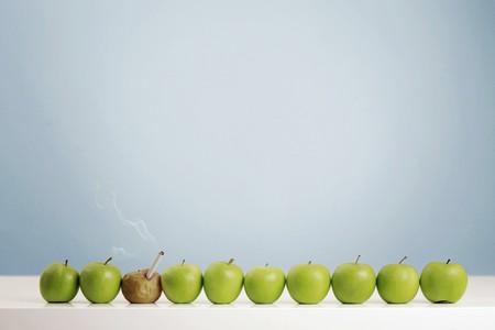 Rotten apple smoking cigarette in between fresh green apples