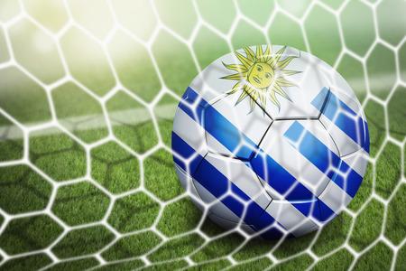 Uruguay soccer ball in goal net