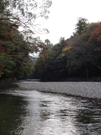 river bank: River bank  Stock Photo