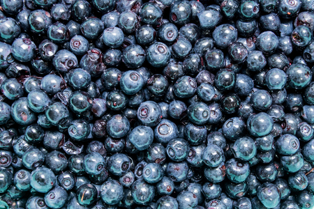 Bilberry background texture. Top view.