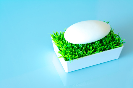 Soap in the soap box on the green grass on a sky blue background