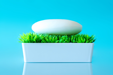 Soap in the soap box on the green grass on a sky blue background. Stock Photo