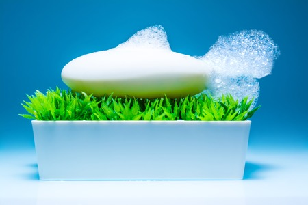 Soap with foam in the form of a fish in the box on the green grass on a sky blue background Stock Photo