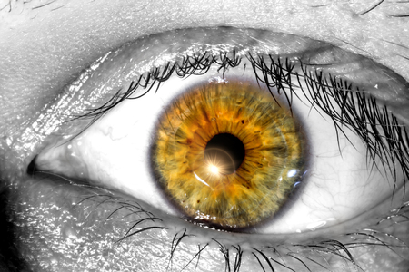 Human yellow eye with a sunlight near the pupil macro close-up texture background