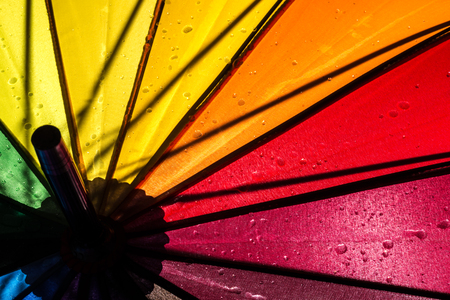 multi colored colorful umbrella with all colors of the rainbow
