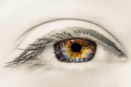 Creative black and white photo of colorful female eye with long eyelashes and professional make-up close-up macro 写真素材