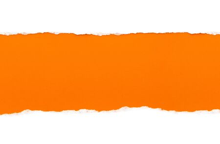 White paper with torn edges isolated with a bright orange color paper background inside. Good paper texture