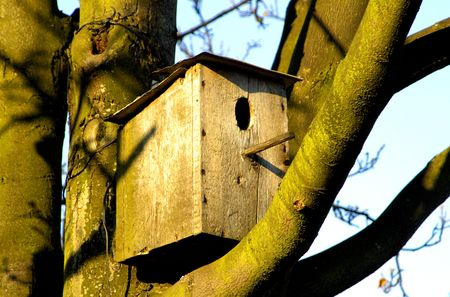 little house, little flat,  conceptual problems of residential  architecture and insurance or just a bird house