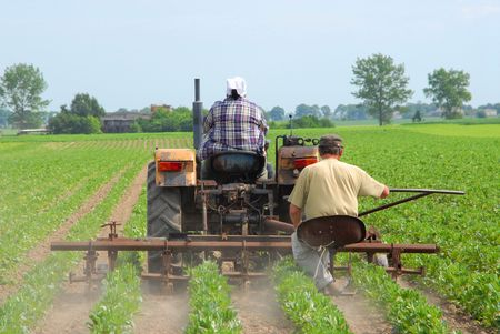 agricultural: Farmers working, cultivating land, agricultural issues
