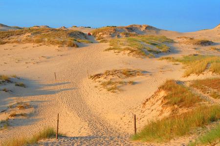general insurance: Large dune at the seaside,  summer holidays, landscape