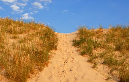 Dune way, summer holidays, concept photo