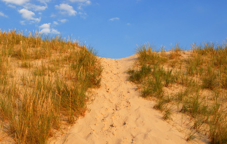 walking path: Dune way, summer holidays, concept