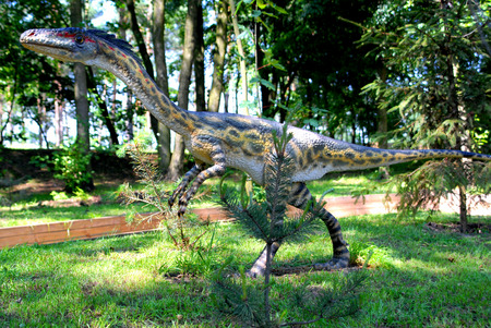 science is exciting: Coelophysis bauri, Coelophys,  dinosaurs series, jurassic park, education, concept