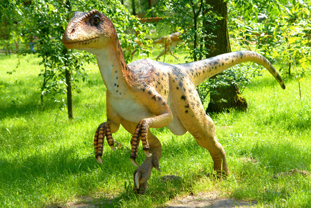 biggest animal: Deinonychus antirrhopus, Deinonych, dinosaurs series, jurassic park, education, concept