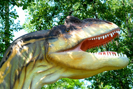 science is exciting: Allosaurus fragilis, Allosaur, dinosaurs series, jurassic park, education, concept