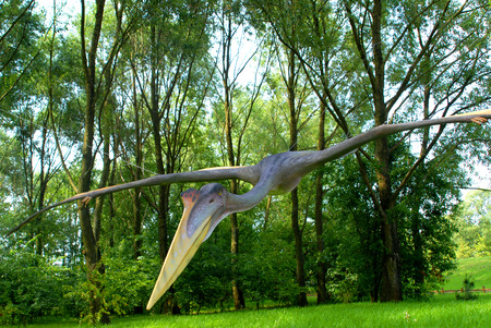 science is exciting: Quetzalcoatlus northropi, Pterodactyl, dinosaurs series, jurassic park, education, cencept Stock Photo
