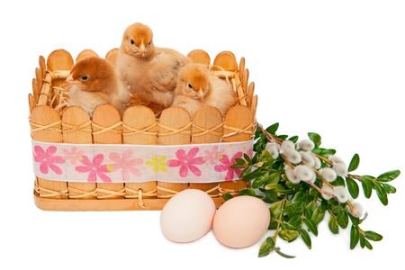 Happy Easter Stock Photo - 9105895
