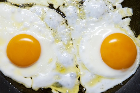 Fried eggs Stock Photo - 10066912