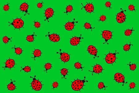 Ladybirds Stock Photo - 10683737