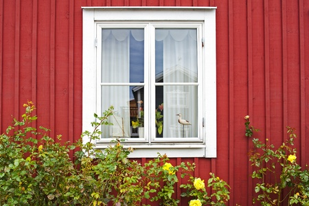house siding: Scandinavian architecture