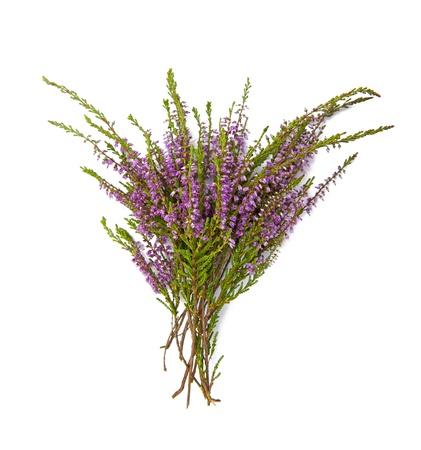 Blumenstrauß aus Heidekraut