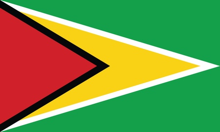 georgetown: Flag of Guyana