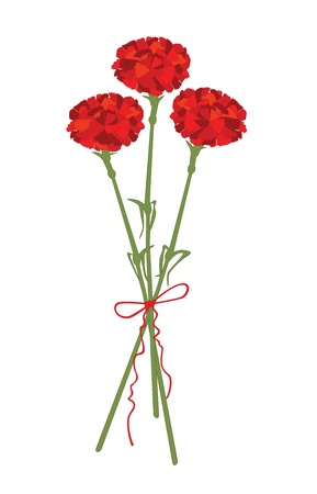 indian spices: Carnation flowers
