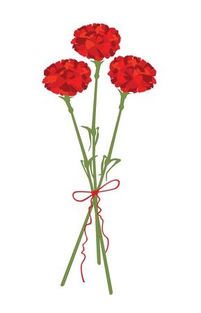 karanfil: Karanfil çiçek Çizim