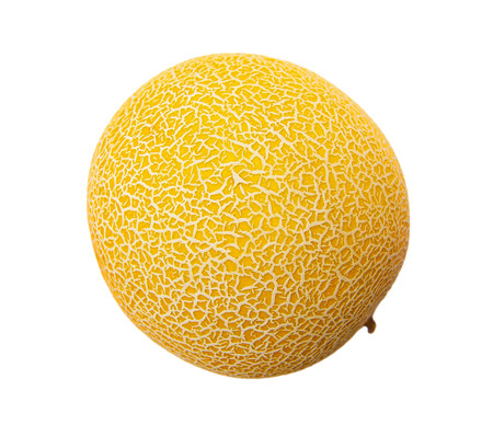 Gala melon isolated on the white background