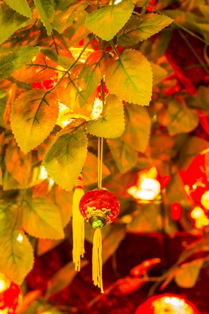 Chinese New Year Tree photo