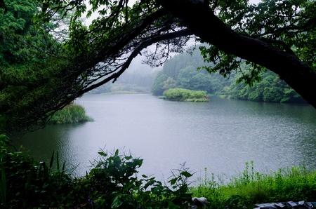 quietness: rain lake