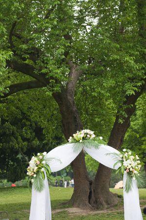 the outdoor wedding of a park. Stock Photo - 5079431