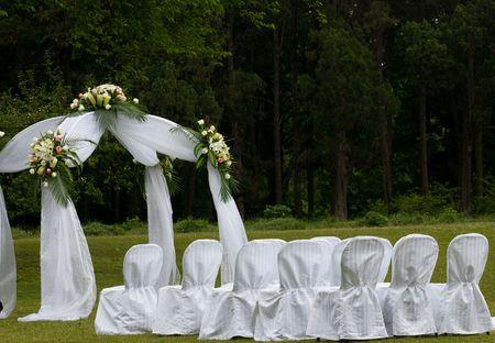 the outdoor wedding of a park.
