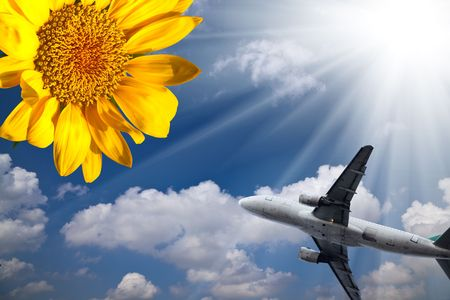 the sunflower and the airplane with blue sky. Stock Photo - 5579191
