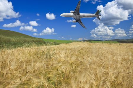 airplane fly on the wheat field with blue sky background. photo
