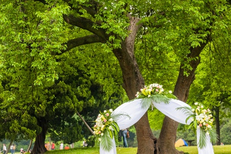 the outdoor wedding of a park. photo